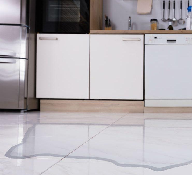 eaking-dishwasher-kitchen
